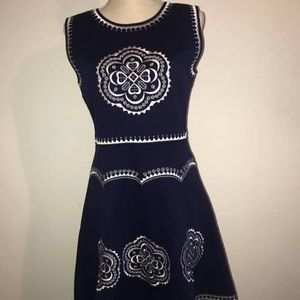 Francesca's Embroidered A-line dress XS